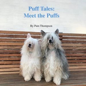 two Chinese crested powderpuffs on a book cover